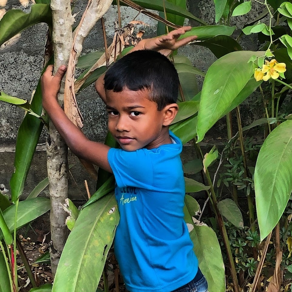 Sri Lankan boy standing in front of tree